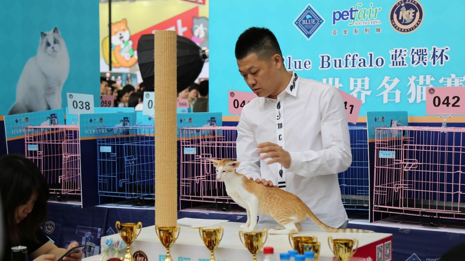 Pet Fair South-China