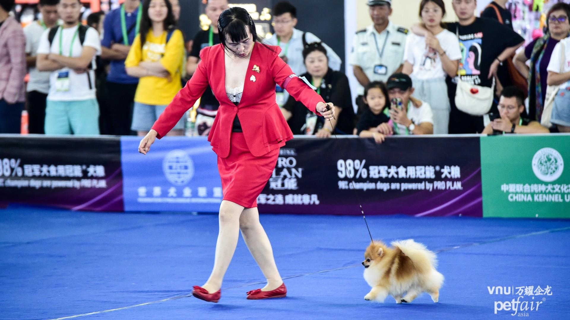 CKU Dog Show